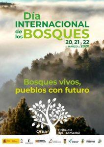 El Día Internacional de los Bosques, con sede en Orea, invita a reflexionar sobre el papel de la gestión forestal en los pueblos
