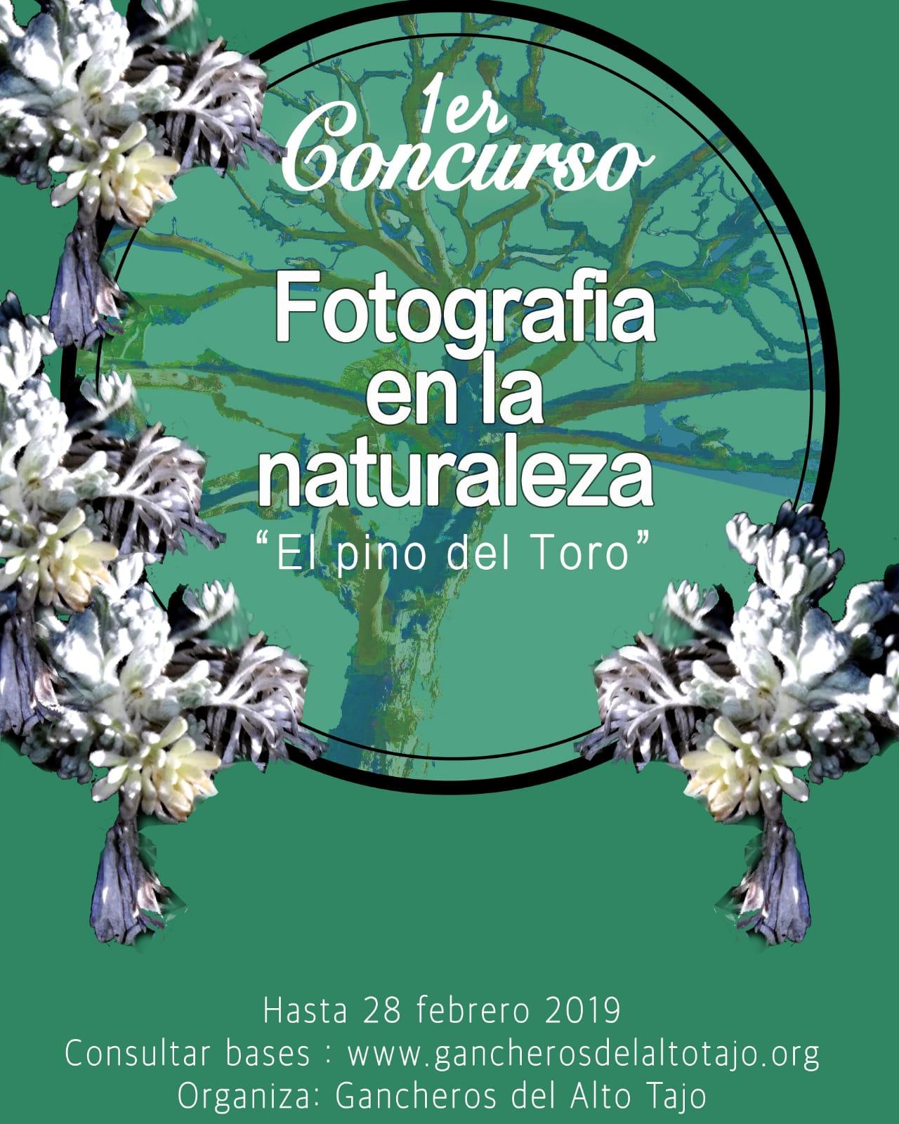 La Asociación de Municipios Gancheros del Alto Tajo convoca un original certamen de fotografía